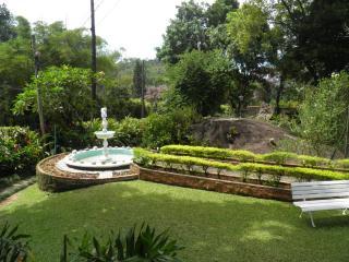 São Paulo: Sitio de Alto Padrão em Guapimirim 4