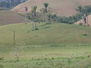 São Paulo: Fazenda com 1292,28 hectares Macaé - Rio de Janeiro  2