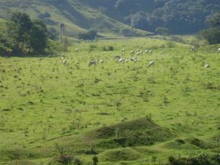 São Paulo: Fazenda com 1292,28 hectares Macaé - Rio de Janeiro  8