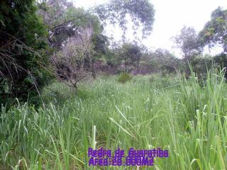 Nilópolis: Terreno Pitoresco 28.000m2 perfeito para Fins Religiosos 4