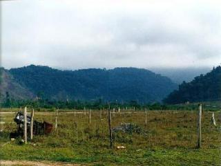 São Paulo: Fazenda na beira da rodovia BR 101 Angra dos Reis - Rio de Janeiro 1