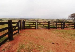 São Carlos: Fazenda pecuária no  município de Bandeirantes - MS  (6118) 6