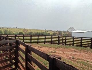 São Carlos: Fazenda pecuária no  município de Bandeirantes - MS  (6118) 8