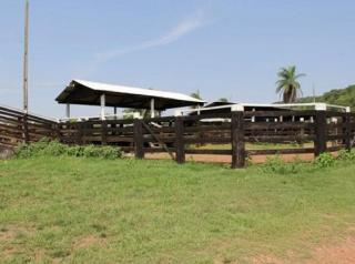 São Carlos: Fazenda Pecuária - Conceição do Araguaia - PA (6137) 7