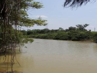 São Carlos: Fazenda Pecuária - Conceição do Araguaia - PA (6137) 8
