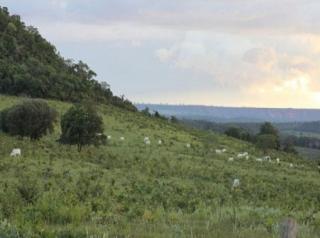São Carlos: Fazenda em Mato Grosso - Alto Araguaia  (6139) 2