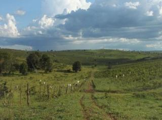 São Carlos: Fazenda em Mato Grosso - Alto Araguaia  (6139) 5