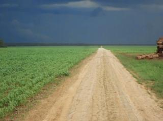 São Carlos: Fazenda Agrícola  situada em Querência - MT (6144) 2