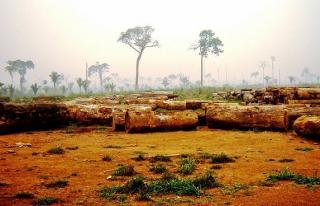 São Carlos: Fazenda Agrícola  situada em Querência - MT (6144) 3