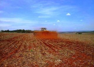 São Carlos: Fazenda Agrícola  situada em Querência - MT (6144) 6