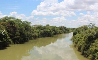 São Carlos: Fazenda Pecuária em Flores de Goiás - GO (6153) 2