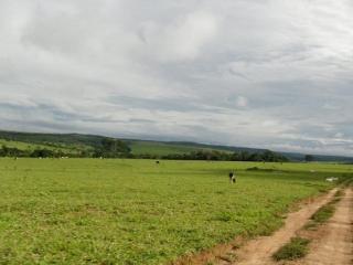 São Carlos: Fazenda Pecuária em Flores de Goiás - GO (6153) 3