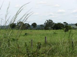 São Carlos: Fazenda de dupla aptidão em Canarana - MT (6155) 1