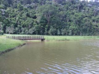 Cachoeiras de Macacu: Silva Jardim 5