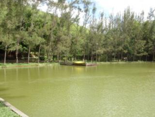 Cachoeiras de Macacu: Silva Jardim 6