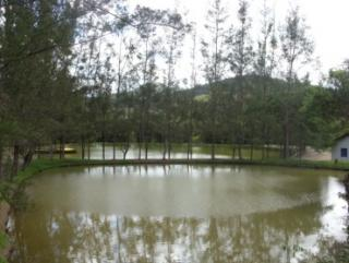Cachoeiras de Macacu: Silva Jardim 7