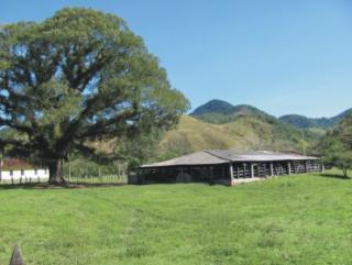Cachoeiras de Macacu: Oportunidade em Silva Jardim 6