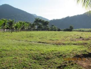 Cachoeiras de Macacu: Sítios em Guapimirim 3