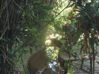 Cachoeiras de Macacu: Guapimirim oportunidade em Sítios 5