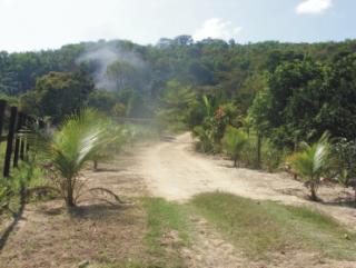 Cachoeiras de Macacu: Sítio barato em Guapimirim 1