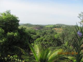 Cachoeiras de Macacu: Chácara em Guapimirim muito barato  1