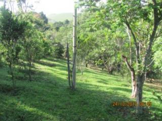 Cachoeiras de Macacu: Chácara em Guapimirim muito barato  3
