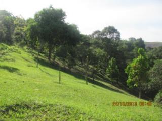 Cachoeiras de Macacu: Chácara em Guapimirim muito barato  4