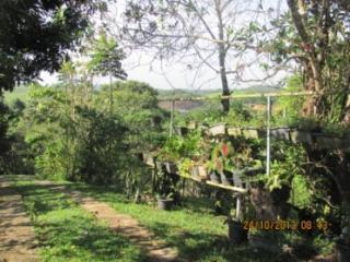 Cachoeiras de Macacu: Chácara em Guapimirim muito barato  5
