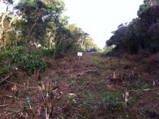 Itanhaém: Terreno na praia com escritura, ótima opção, aproveite! 1
