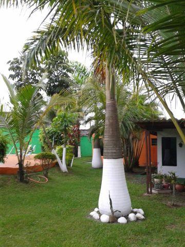 Santo André: Terreno Plano 1070 m² Praia da Enseada - Guarujá. 5