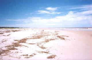 Área Beira Mar em Belmonte, Sul da Bahia