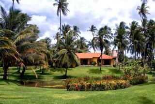 Area de 10.000 m² com 2 casas em São Miguel do Gostoso