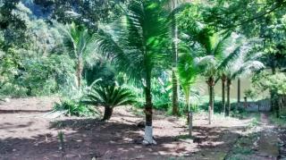 Itaboraí: Condominio de Chacaras 6