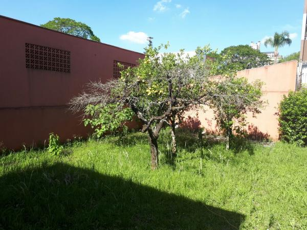 Curitiba: Residência Comercial no Alto da XV - Ref 304R 22