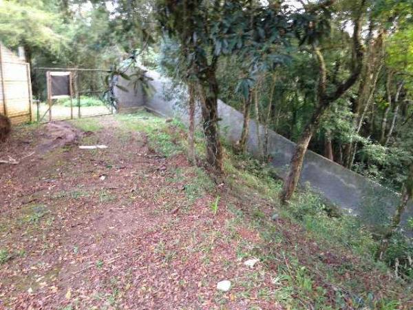 Curitiba: Terreno no Butiatuvinha - Ref 402T 1