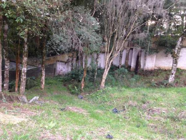 Curitiba: Terreno no Butiatuvinha - Ref 402T 4