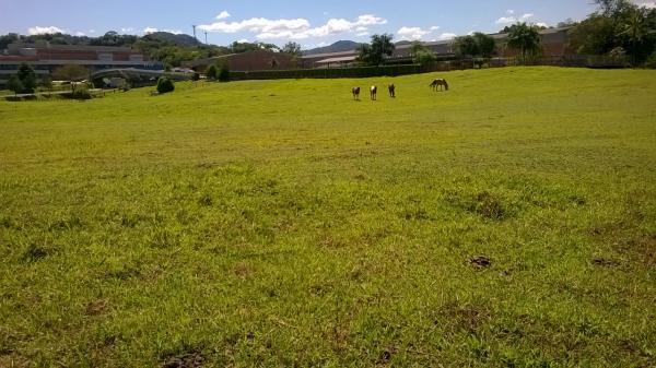 São Paulo: Terreno na Rodovia em Testo Salto, Blumenau 10
