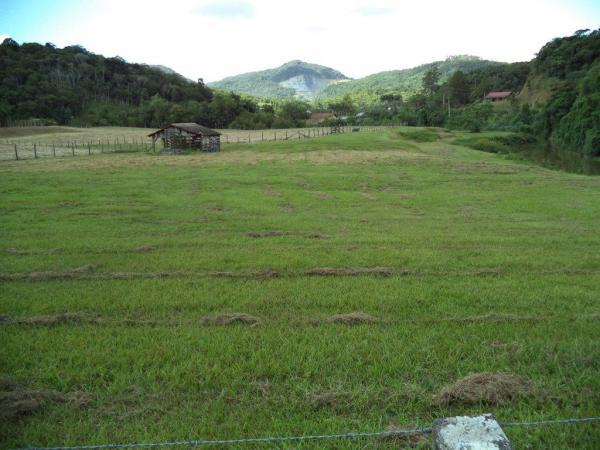 São Paulo: Terreno na Rodovia em Testo Salto, Blumenau 2