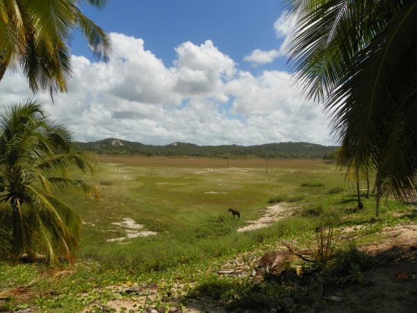 São Paulo: Grande Área com 177 ha e 733 m linha mar em Jandaíra 22