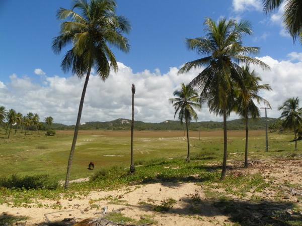 São Paulo: Grande Área com 177 ha e 733 m linha mar em Jandaíra 4