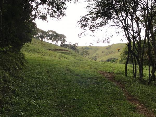 São Paulo: Excelente fazenda orgânica em cenário de montanha 12
