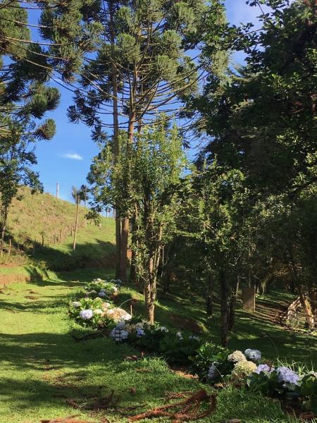 São Paulo: Excelente fazenda orgânica em cenário de montanha 13