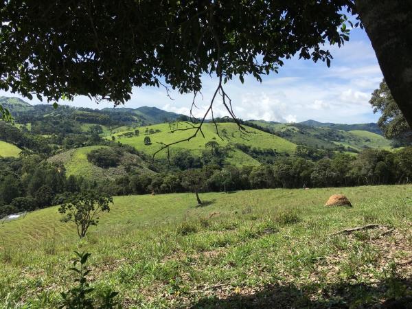 São Paulo: Excelente fazenda orgânica em cenário de montanha 15