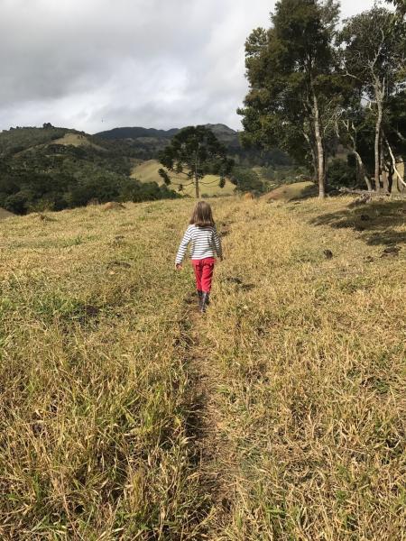 São Paulo: Excelente fazenda orgânica em cenário de montanha 21