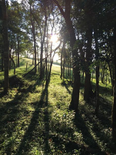 São Paulo: Excelente fazenda orgânica em cenário de montanha 2