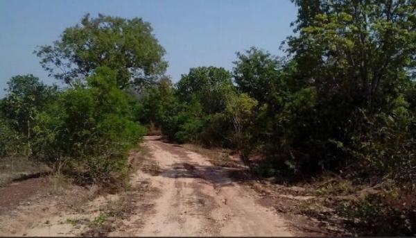 São Paulo: Fazenda com 3138 alqueires em Novo Acordo, Tocantins 2