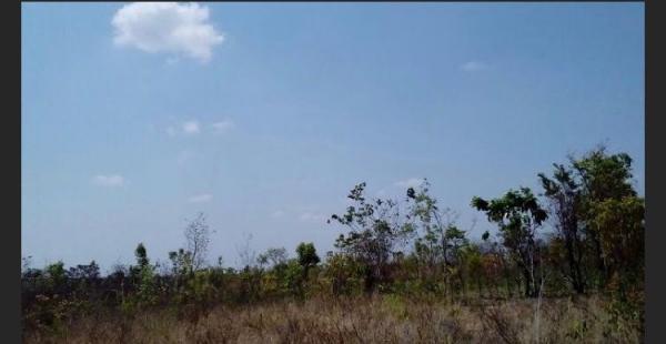São Paulo: Fazenda com 3138 alqueires em Novo Acordo, Tocantins 4