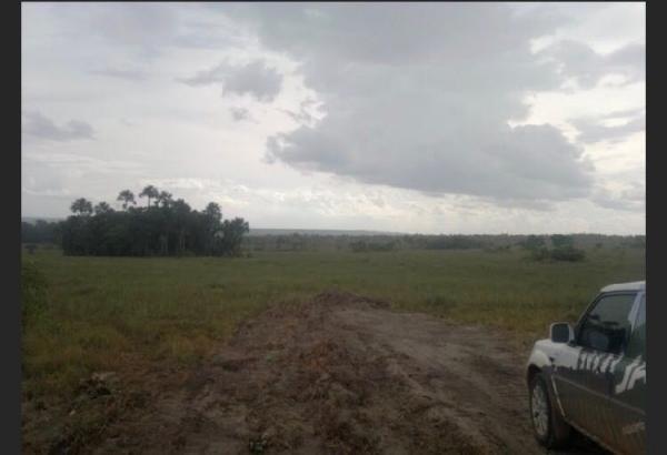 São Paulo: Fazenda com 3138 alqueires em Novo Acordo, Tocantins 6