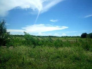 Fortaleza: Fazenda 284 ha com frente para CE040 e Estrada de Itapeim 12