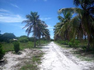 Fortaleza: Fazenda 284 ha com frente para CE040 e Estrada de Itapeim 8